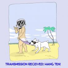 Timecop Beach Party - Transmission Received: Hang Ten!