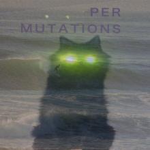 Per Mutations - Surfing in the Phenomenal World